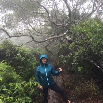 Awa'Awapuhi Trail